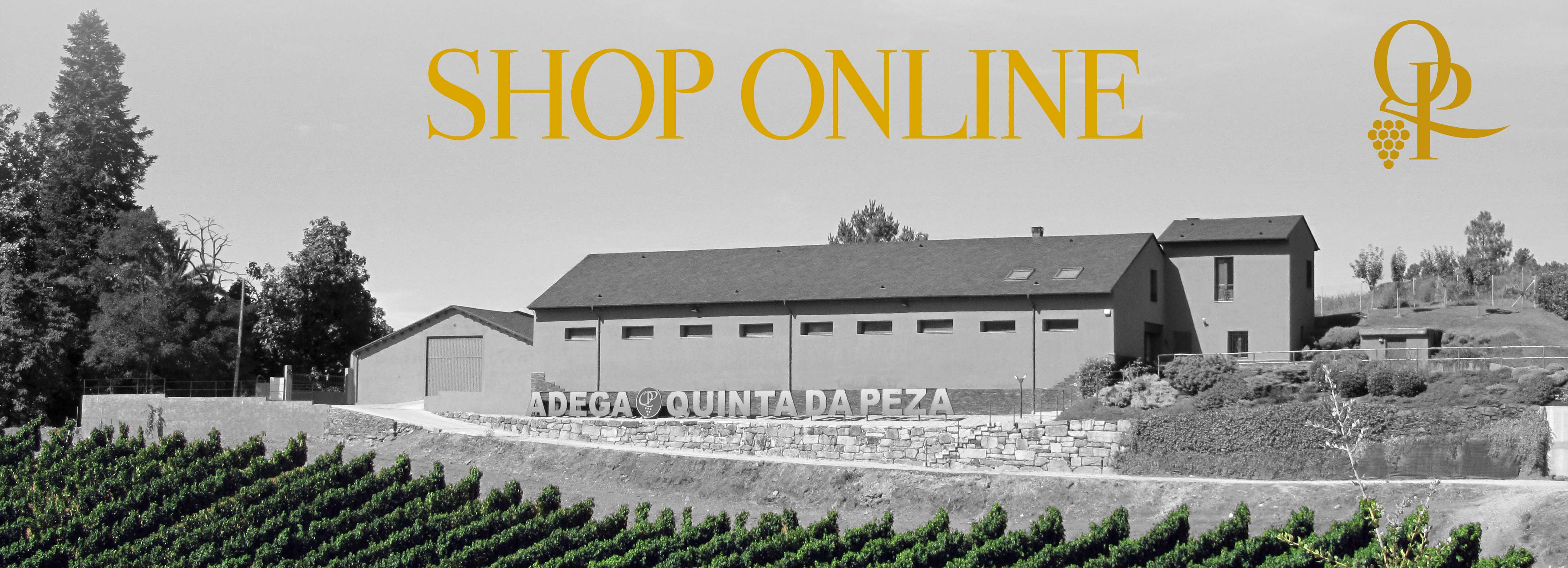 Discover our store